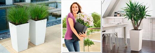 Купить кашпо для цветов большие